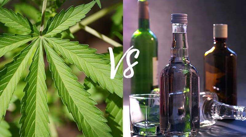 Konopie w natarciu, czyli w czym marihuana jest lepsza od alkoholu?